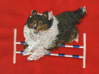 TriColored Shetland Sheepdog Over Jump Without Blaze