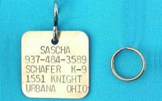 large square brass pet id tags